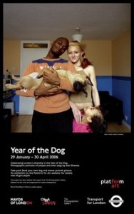 Year of The Dog Poster 618